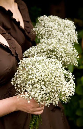 Benediktes blog baby 39s breath bouquet are timeless and the tiny baby 39s breath bouquet are timeless and the tiny white flowers will match any mightylinksfo