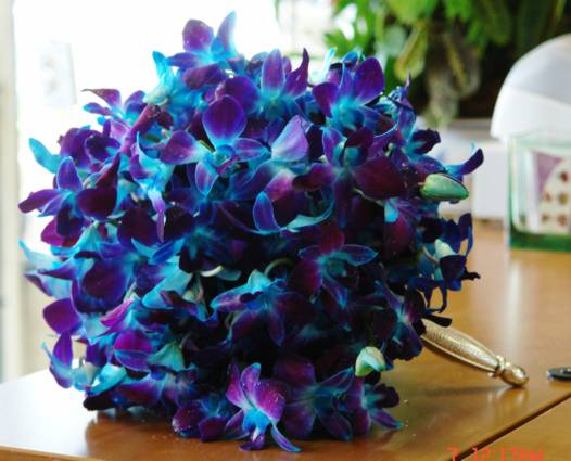 Bouquet Bridal Blue Orchid Bouquets