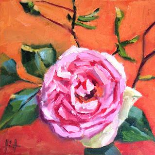 Rose de Jocelyn by Liza Hirst