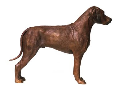 Rhodesian Ridgeback fine art bronze