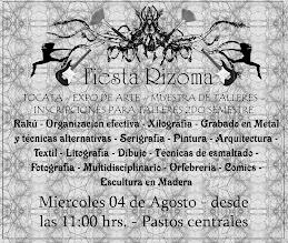 Volante Fiesta Rizoma