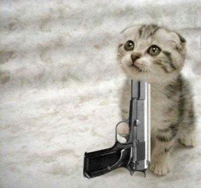 Cute Kittens With Guns