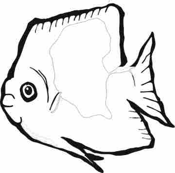 fish pictures for coloring. Funny Fish Coloring Pages