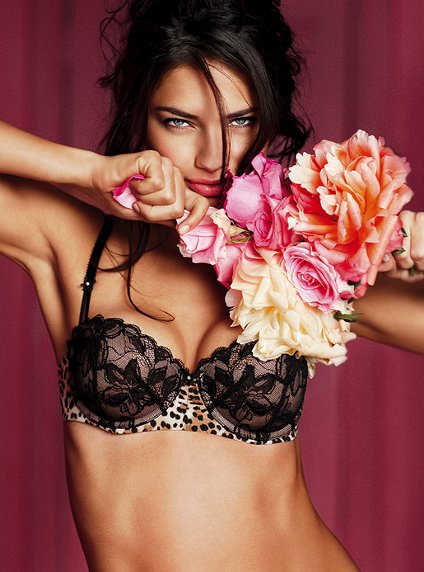 Victoria's Secret Valentine's Day Lingerie collection for 2011 (Photos)