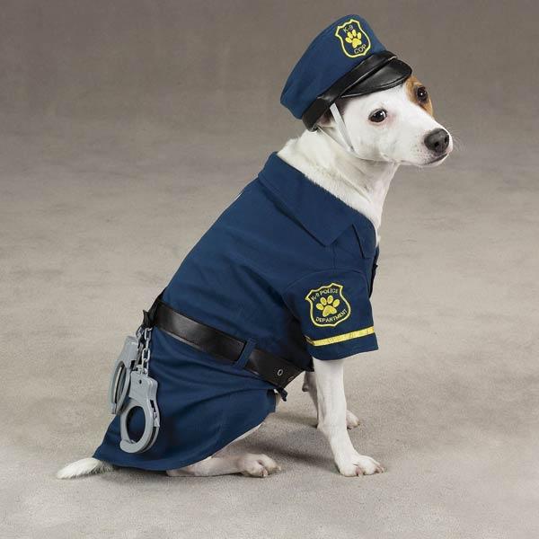 Image Result For Elvis Dog