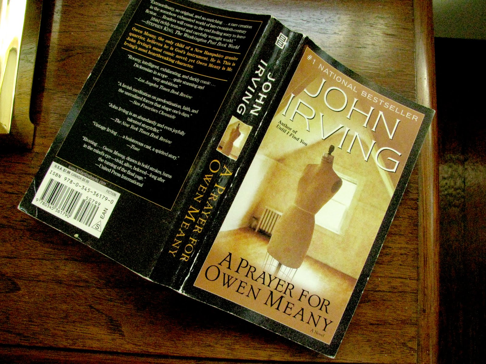 an analysis of owen meany the protagonist in the novel a prayer for owen meany by john irvin Owen meany by john irvin, a prayer for owen meany has 259929 ratings and 11992 reviews nick said: i m s hort on time for this review, but man, this is the closest.