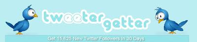 программа вирусного продвижения в Twitter - Twittergetter