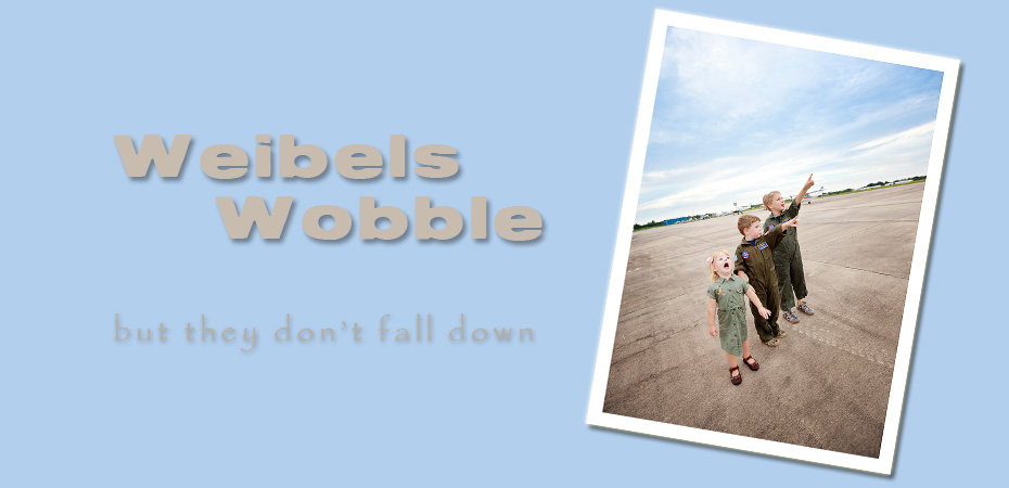 Weibels Wobble...