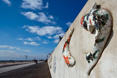 Kooikarpers op de muur van het New York Aquarium
