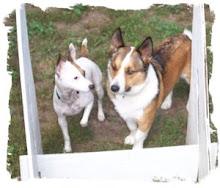 Bebe and Cody