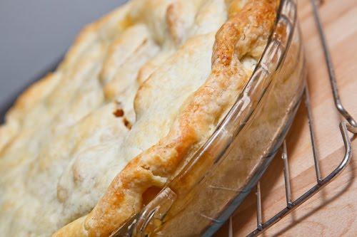 Butter pie crust recipes
