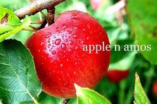 apple n amos