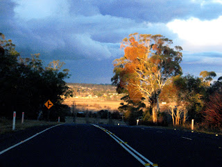 Gwydir Highway, looking east, between Inverell and Glen Innes