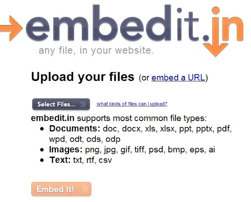 embedded object, embed files, embed documents, embed texts, embed images, embed photos, embed graphics