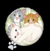 Oferecido-Mia Pandora cat