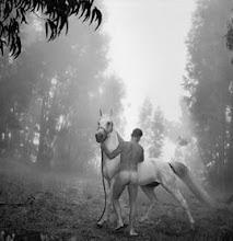 Arthur Tress [Fotografo Americano, born 1940]