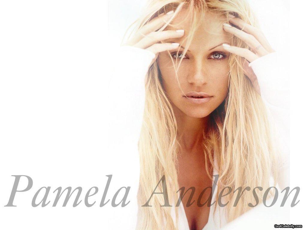http://3.bp.blogspot.com/_ULYzBXdpvvA/TDl_Mx1IEGI/AAAAAAAAATw/TL_VotvqL0k/s1600/Pamela+Anderson+2.jpg