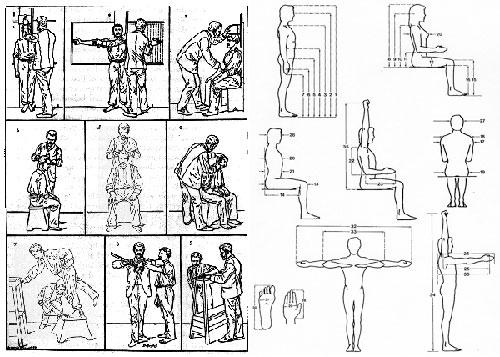 Estudar arte e design de interiores ergonomia voltada for Antropometria estatica