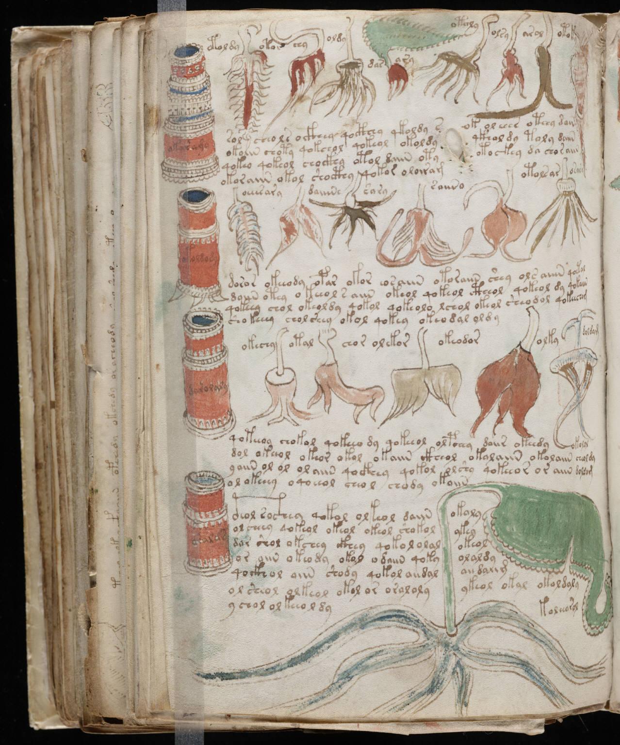 [En esta imagen podemos ver una de las páginas del enigmático manuscrito  Voynich, un misterioso libro, escrito y dibujado a mano por un autor  anónimo hace ...
