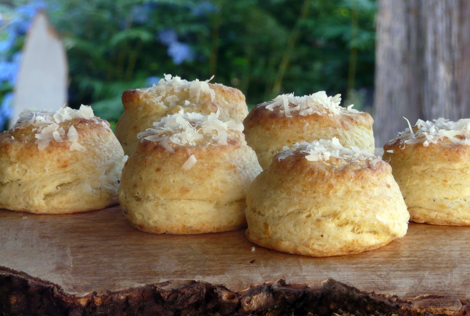 Thibeault's Table: Parmesan and Black Pepper Biscuits