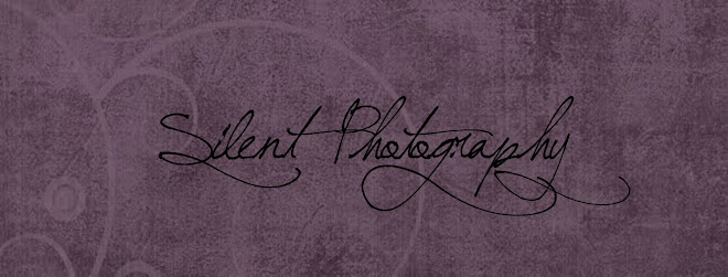 Silent Photography