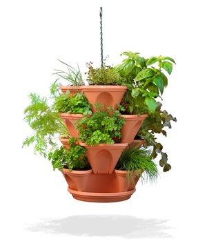 Blog Mania de Flor: Jardins em pequenos espa?os