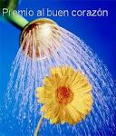 Premio al buen corazón, otorgado por Movimento Ordem Vigilia Contra a Corrupcao