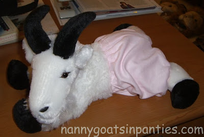 stuffed goat with pink panties