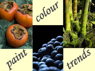 Paint Colour Trends 2008