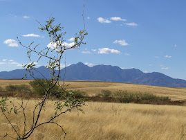 Beautiful Sonoita, Arizona