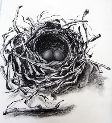 1010 Drawing Texture Bird Nest Drawings