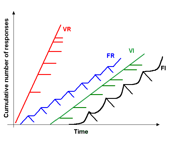 VISION: Psychology: Schedule of reinforcement (Learning)