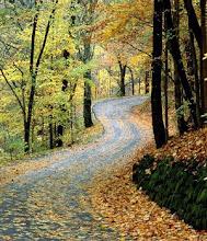 Perfume de otoño y hojas amarillas... dias tristes...