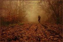 Caminos de la tarde que te alejaron de todods...