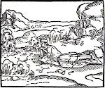 La Rabdomanzia. I parte: La Bacchetta del Rabdomante