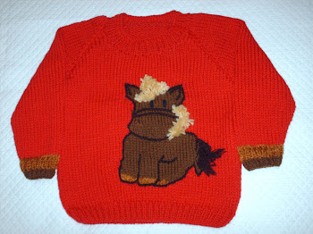 CHALECO CABALLITO/LITTLE HORSE PULLOVER