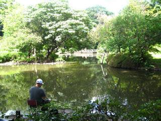Fishing in Arisugawa-no-miya Memorial Park, Tokyo.