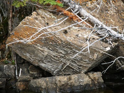 stromatolite on Red Lake, Ontario