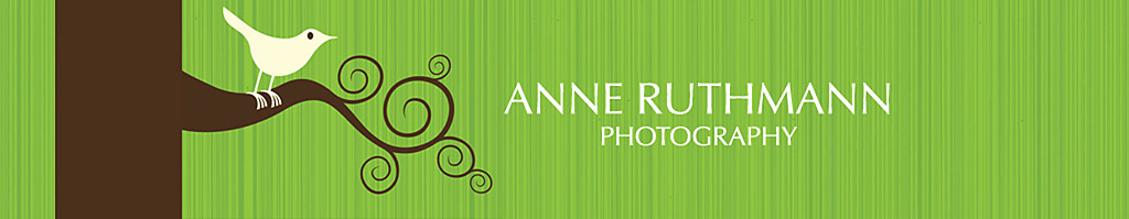 Anne&#39;s Blog