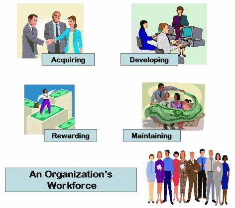 role of human resource management in an organization pdf