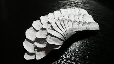 satoshi wing