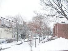 Flocos de Neve New York - clique na foto