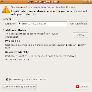 I Suggest You Select Permanently Store This Exception Because Run From Your Own Personal Computer Then Click Confirm Security
