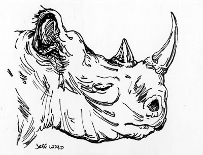rhinocerous pen and ink drawing