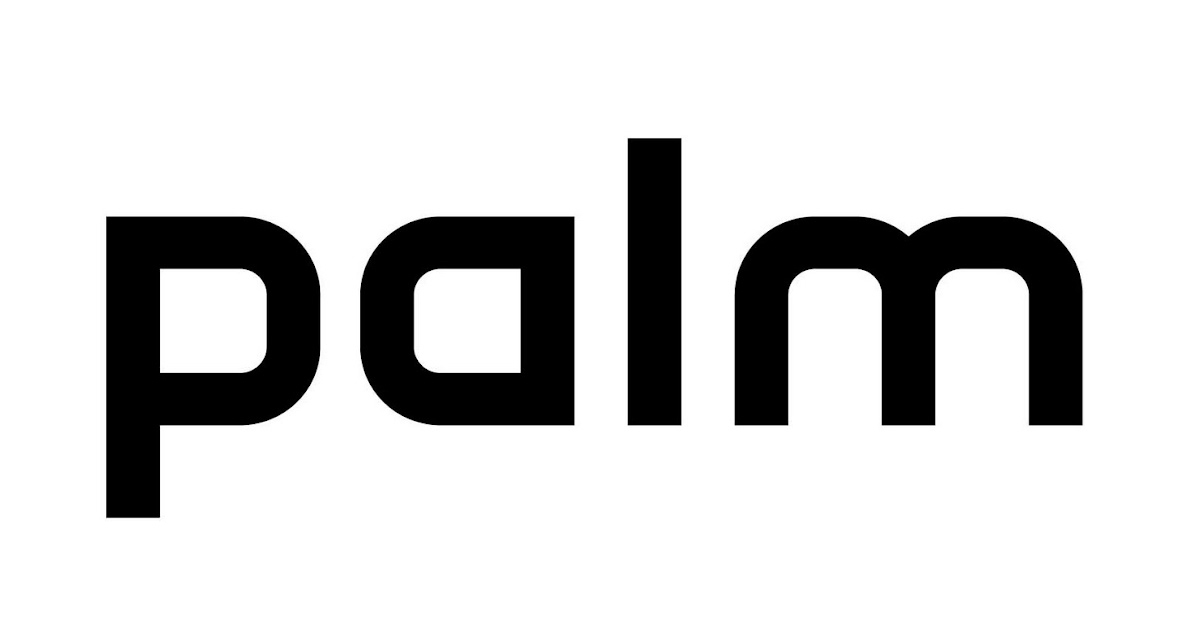 vector of the world  palm logo
