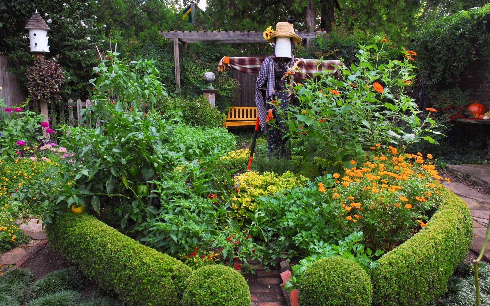 P o t a g e r edible landscaping by rosalind creasy for Edible garden design