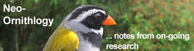 Notes from on-going research on Neotropical birds