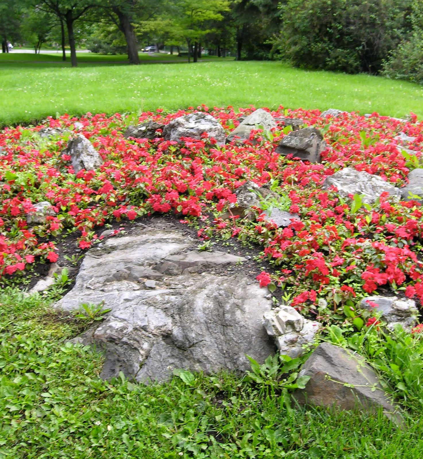 Recreating eden saturday photo alfred joyces garden this year someone also had the bright idea of planting an outcropping of rock with impatiens quite lovely publicscrutiny Image collections