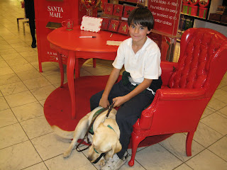 Nick in a chair next to Santa's mailbox. Poppy trying to lie down with her tail a blur of movement