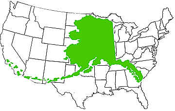 Alaska Over Usa Map Afputracom - Alaska superimposed on us map